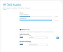 Dell Audio (Main)